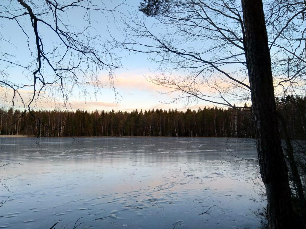 Tesomajärvi.
