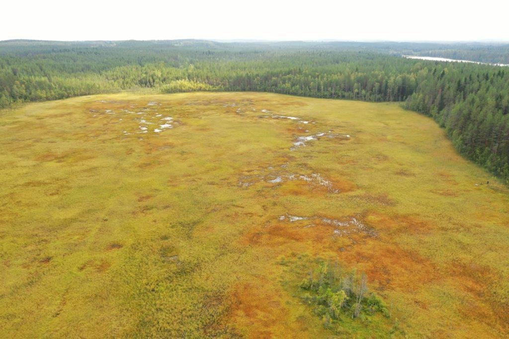 Maisemakuva, jossa näkyy Aittolampi.