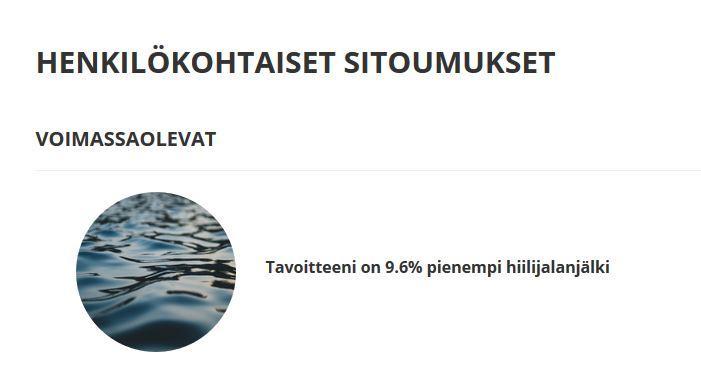 Virve Rinnolan henkilökohtainen hiilijalanjäljen vähennystavoite näkyy kuvassa. Se on 9,6 % pienempi kuin nykyinen.
