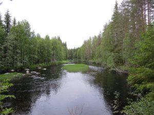 Suomalainen joki kuvassa. Kuvituskuva. Kuva: Pixabay.