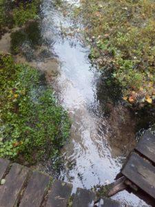Kuvassa näkyy Ruoveden Ryövärinkuoppa, jossa virtaa pohjavesi. Kohde kuuluu Siikakankaan pohjavesilaueeseen, joka kuuluu luokkaan E. Pohjavesialueen luokitus perustuu luonnontilaisen tai luonnontilaisen kaltaiseen muun lainsäädännön (esim. Metsälaki) nojalla suojeltuun pohjavedestä suoraan riippuvaiseen merkittävään pintavesi- ja maaekosysteemiin. Kuva: Annukka Vähä-Vahe