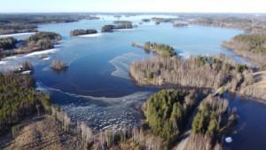 Ilmasta otettu kuva Hauhonselästä Vuolujoen suulta. Kuvaajana Anne Soittila.